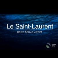 Le Saint-Laurent : notre fleuve vivant