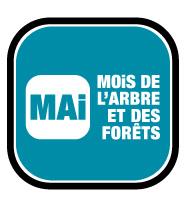 mai_mois_arbre_logo